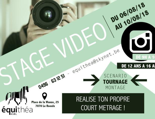 stage vidéo affiche (002)